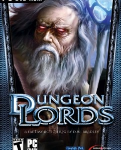Dungeon Lords Steam Edition indir