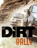 DiRT Rally pc indir