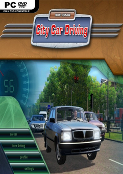 City Car Driving Full indir